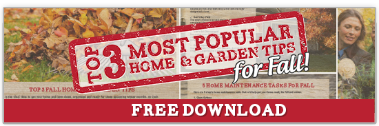 download-top-3-most-popular-home-and-garden-tips-for-fall