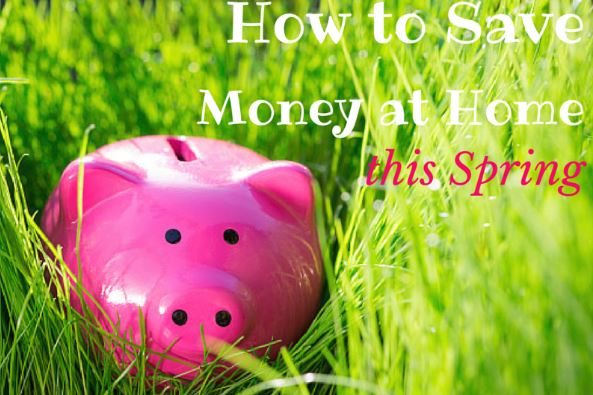 Nine_Ways_to_Save_Money_Home_this_Spring_Cook_Portable_Warehouses