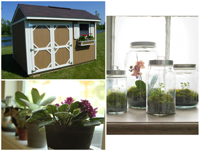 enhance_the_look_of_your_shed_flowers_Cook_Portable_Warehouses