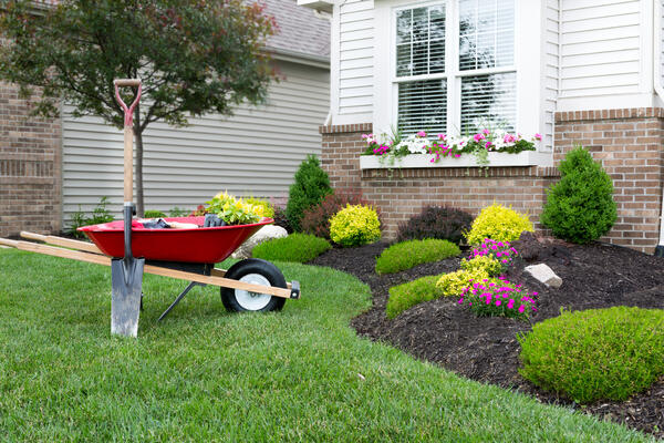 Landscaping your yard