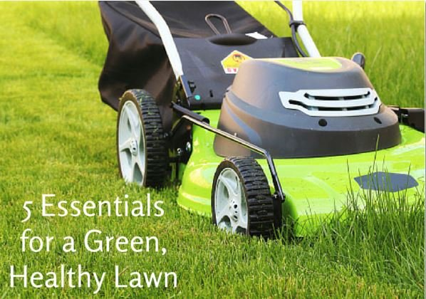 Essentials_for_Green_Healthy_Lawn_Cook_Portable_Warehouses
