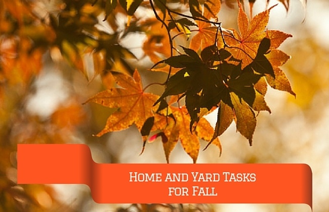 Home_and_Yard_Tasks_for_your_Fall_To-Do_List_Cook_Portable_Warehouses