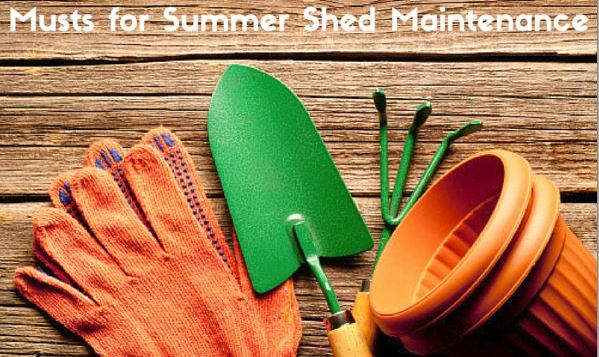 Musts_for_Summer_Shed_Maintenance_Cook_Portable_Warehouses
