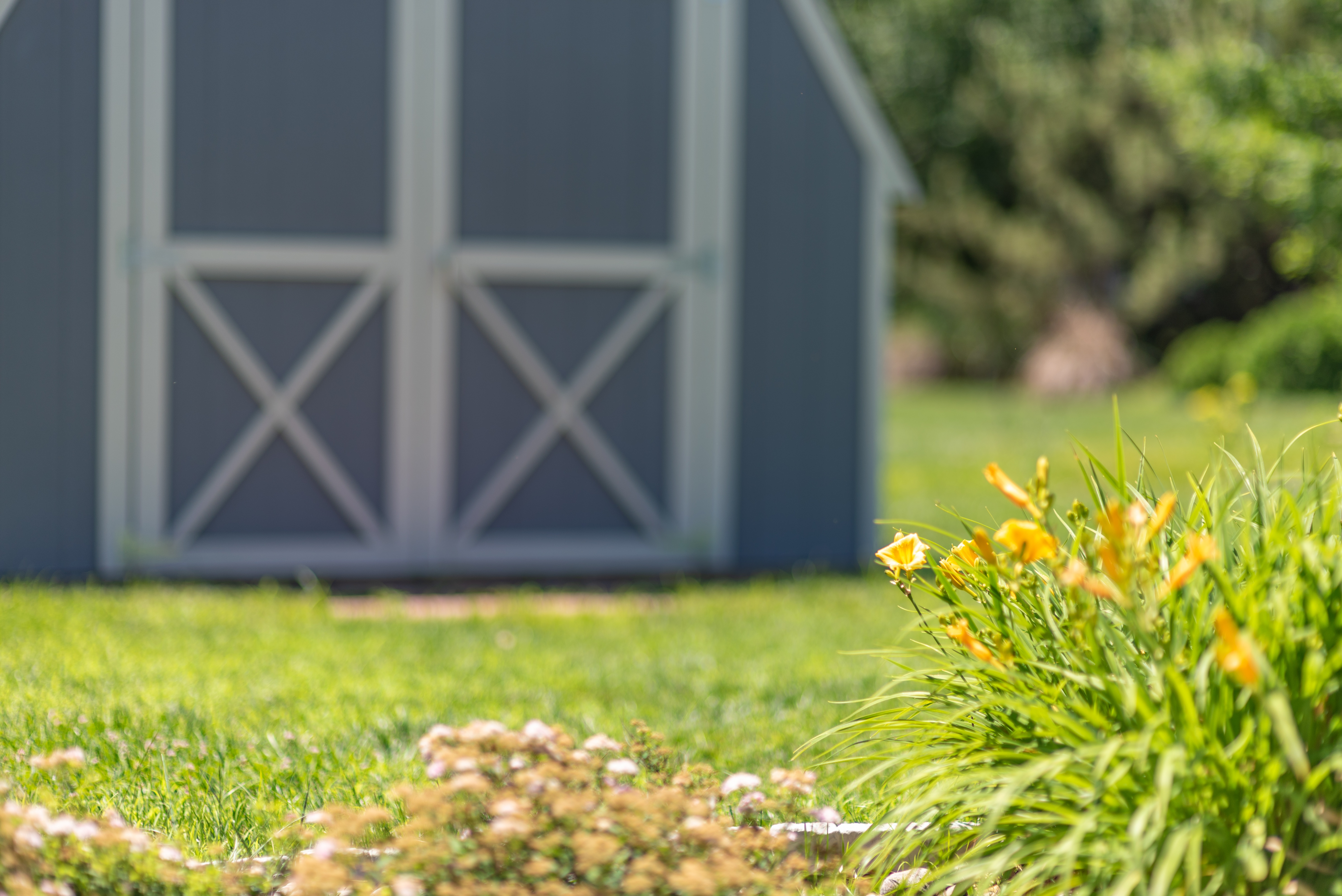 How to Choose a Pre-Owned Shed -- Shed and flowers in yard