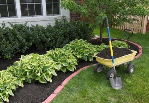 Spring_Gardening_Tasks_Cook-985882-edited