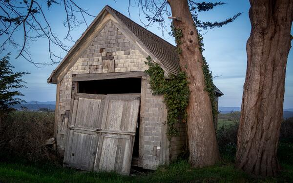 Run Down Shed, Sheds to Avoid