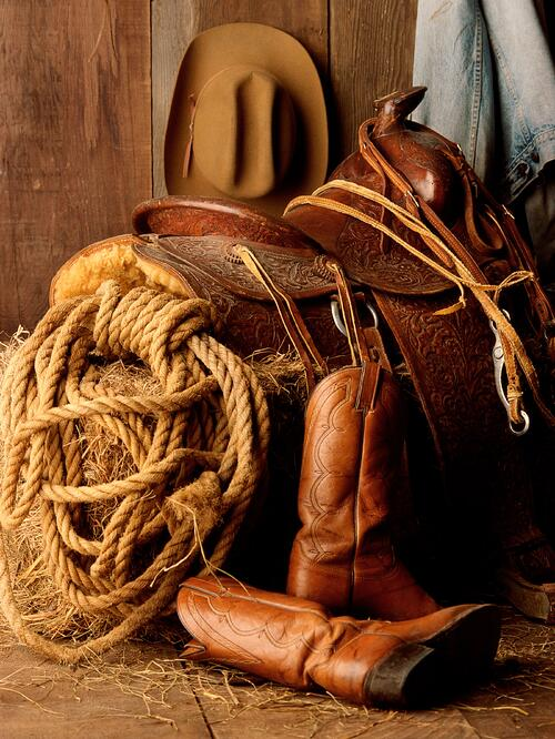 Tack Room from Cook Shed