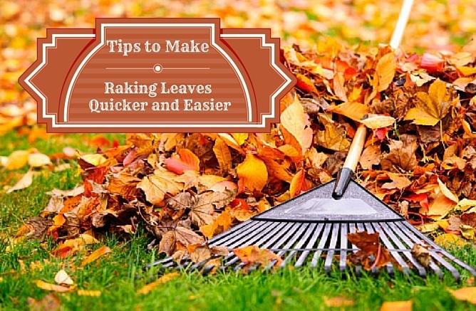 Tips_to_Make_Raking_Quciker_and_Easier_Cook_Portable_Warehouses