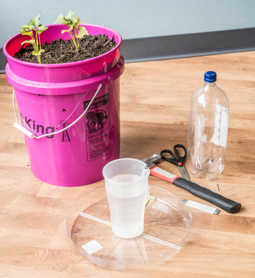 Drip Water System for Container Gardening
