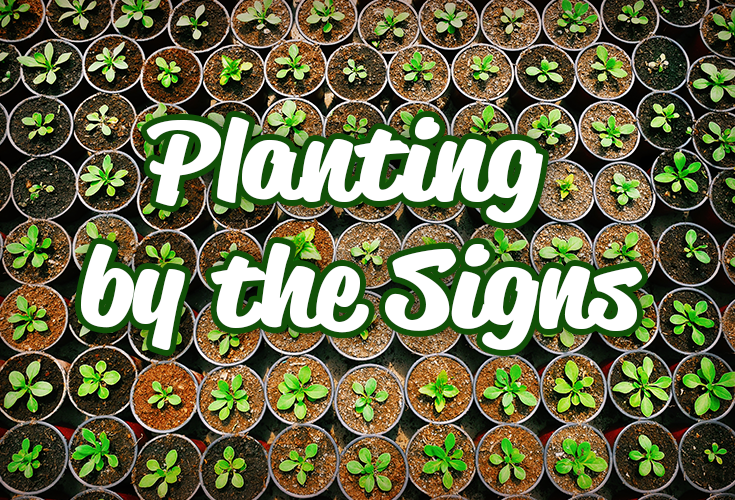 Learning How to Plant by the Signs