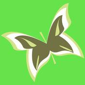 iscape app.jpg